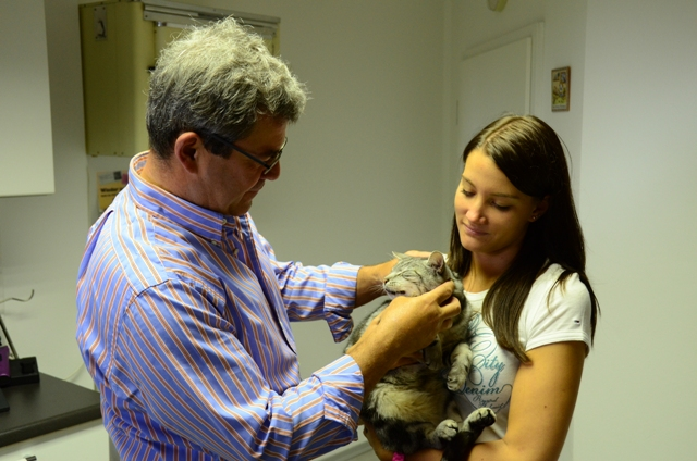 Tierarzt Schierling